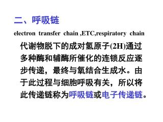 ????? electron  transfer  chain ,ETC,respiratory  chain