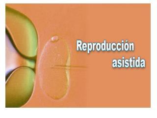 Conceptos básicos de reproducción