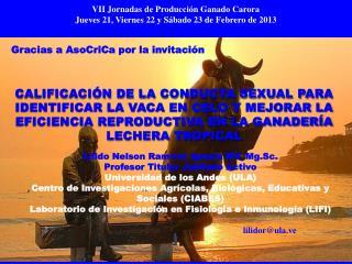 Lilido Nelson Ramírez Iglesia MV. Mg.Sc. Profesor Titular Jubilado Activo