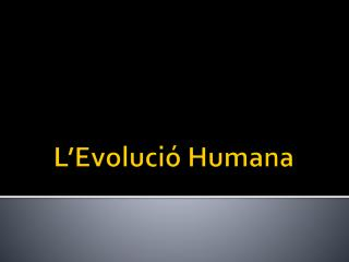 L'Evolució Humana