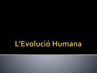 L�Evoluci� Humana