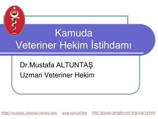 Kamuda  Veteriner Hekim İstihdamı