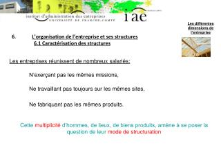 6. L'organisation de l'entreprise et ses structures 6.1 Caractérisation des structures