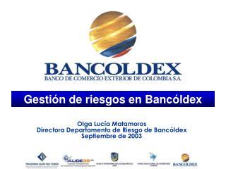 Gestión de riesgos en Bancóldex