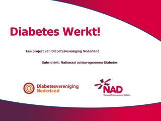 Diabetes Werkt! Een project van Diabetesvereniging Nederland