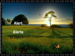 Alert Alerta