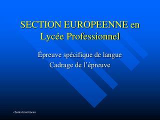 SECTION EUROPEENNE en Lycée Professionnel