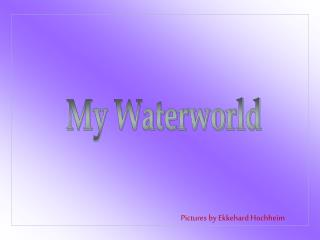 My Waterworld