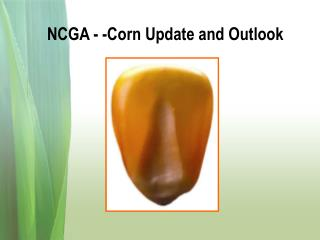 NCGA - -Corn Update and Outlook