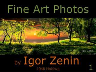 Fine Art Photos