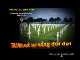 Slideshow : Giuse Maria Định GMD.107.09