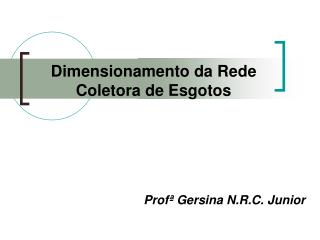 Prof  Gersina N.R.C. Junior