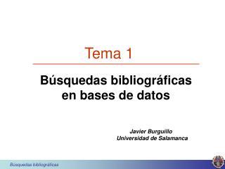 Búsquedas bibliográficas en bases de datos