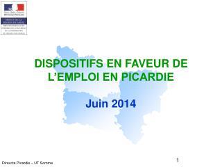 DISPOSITIFS EN FAVEUR DE L'EMPLOI EN PICARDIE Juin 2014