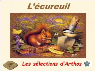 L��cureuil