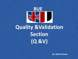 Quality &Validation Section (Q &V)