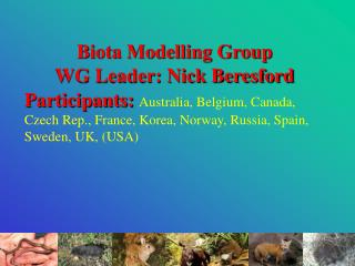Biota Modelling Group WG Leader: Nick Beresford