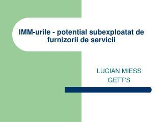 IMM-urile - potential subexploatat de furnizorii de servicii