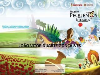 JOÃO VITOR DUARTE GONÇALVES