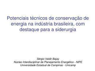 Sérgio Valdir Bajay Núcleo Interdisciplinar de Planejamento Energético - NIPE