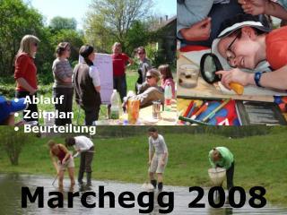 Marchegg 2008