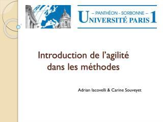 Introduction de l'agilité  dans les méthodes