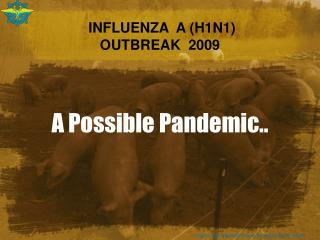 INFLUENZA  A (H1N1)  OUTBREAK  2009
