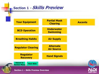 Section 1  -  Skills Preview