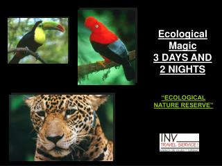 Ecological Magic 3 DAYS AND 2 NIGHTS