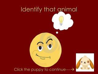 Identify that animal