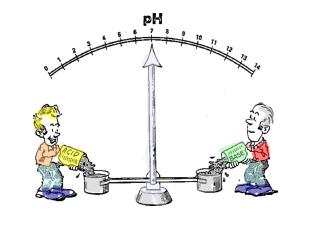 Definition pH and pOH.  Given pH, pOH, [H 3 O + ] or [OH¯], calculate the remaining values.
