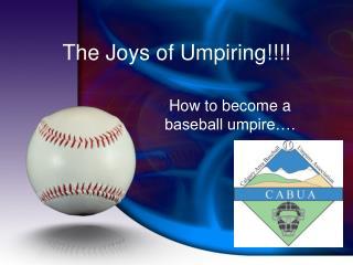 The Joys of Umpiring!!!!