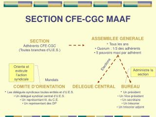 SECTION CFE-CGC MAAF