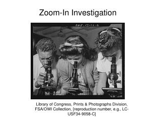 Zoom-In Investigation