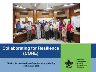 Collaborating for Resilience (CORE)