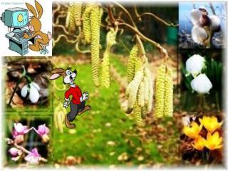 Läuft das Glück im Frühling rund Wäre das ein schöner Fund