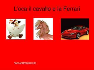 L'oca il cavallo e la Ferrari