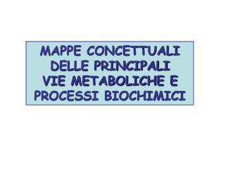 MAPPE CONCETTUALI DELLE PRINCIPALI  VIE METABOLICHE E PROCESSI BIOCHIMICI