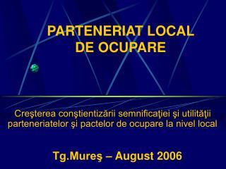 PARTENERIAT LOCAL  DE OCUPARE
