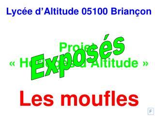 Lycée d'Altitude 05100 Briançon Projet  «Horloges d'Altitude» Les moufles