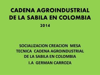CADENA AGROINDUSTRIAL DE LA SABILA EN COLOMBIA 2014