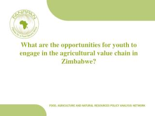 What are the opportunities for youth to engage in the agricultural value chain in Zimbabwe?