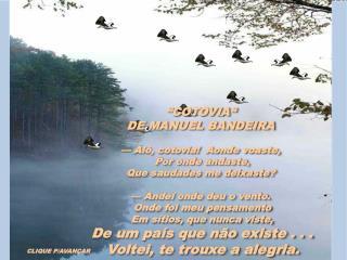 """COTOVIA""   DE MANUEL BANDEIRA —  Alô, cotovia !   Aonde voaste,  Por onde andaste ,"