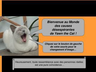 Bienvenue au Monde  des causes désespérantes de Yawn the Cat !