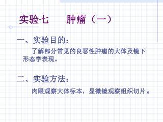 实验七      肿瘤(一)