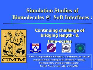 Simulation Studies of Biomolecules @  Soft Interfaces :