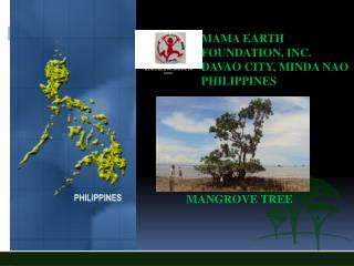 MAMA EARTH   			           FOUNDATION, INC.