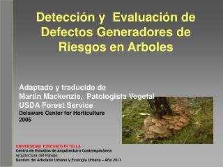 Detección y  Evaluación de  Defectos Generadores de Riesgos en Arboles