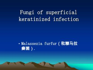 Fungi of superficial keratinized infection