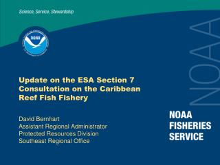 Update on the ESA Section 7 Consultation on the Caribbean Reef Fish Fishery
